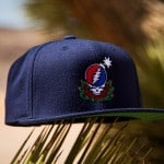 The Hundreds X Grateful Dead Collection Steal Your Face Snapback Hat