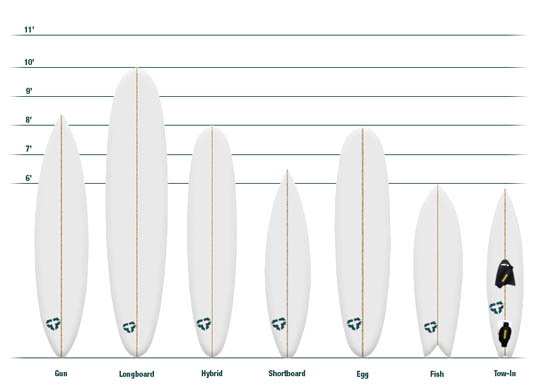 Guide To Surfboard Shapes | Tactics