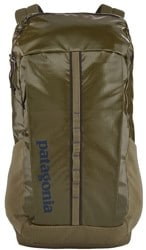 Patagonia Black Hole Pack 25L Backpack - sage khaki