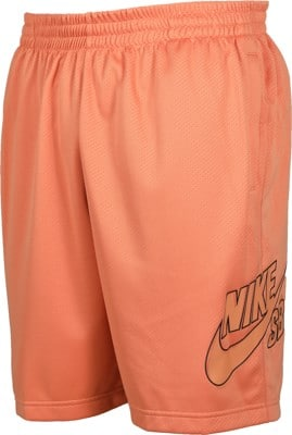 Nike SB Dri-Fit Sunday Shorts - view large