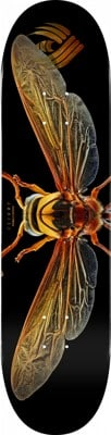 Powell Peralta Biss Potter Wasp 8.0 Flight 247 Shape Skateboard Deck - view large